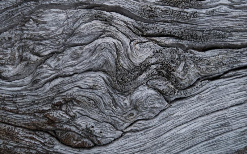 Tre - Jotunheimen. Foto: Lars Verket